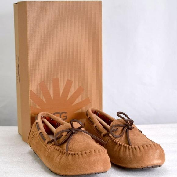 UGG Shoes   Youth Ryder Jungle Chestnut